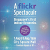 Singapore's First-ever Indoor Fireworks Light Show Display